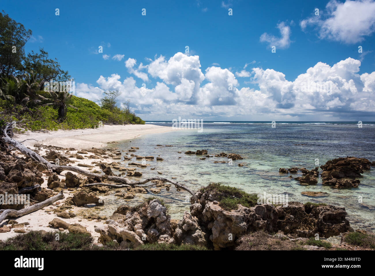 Coastline, Denis Private Island, Seychelles - Stock Image
