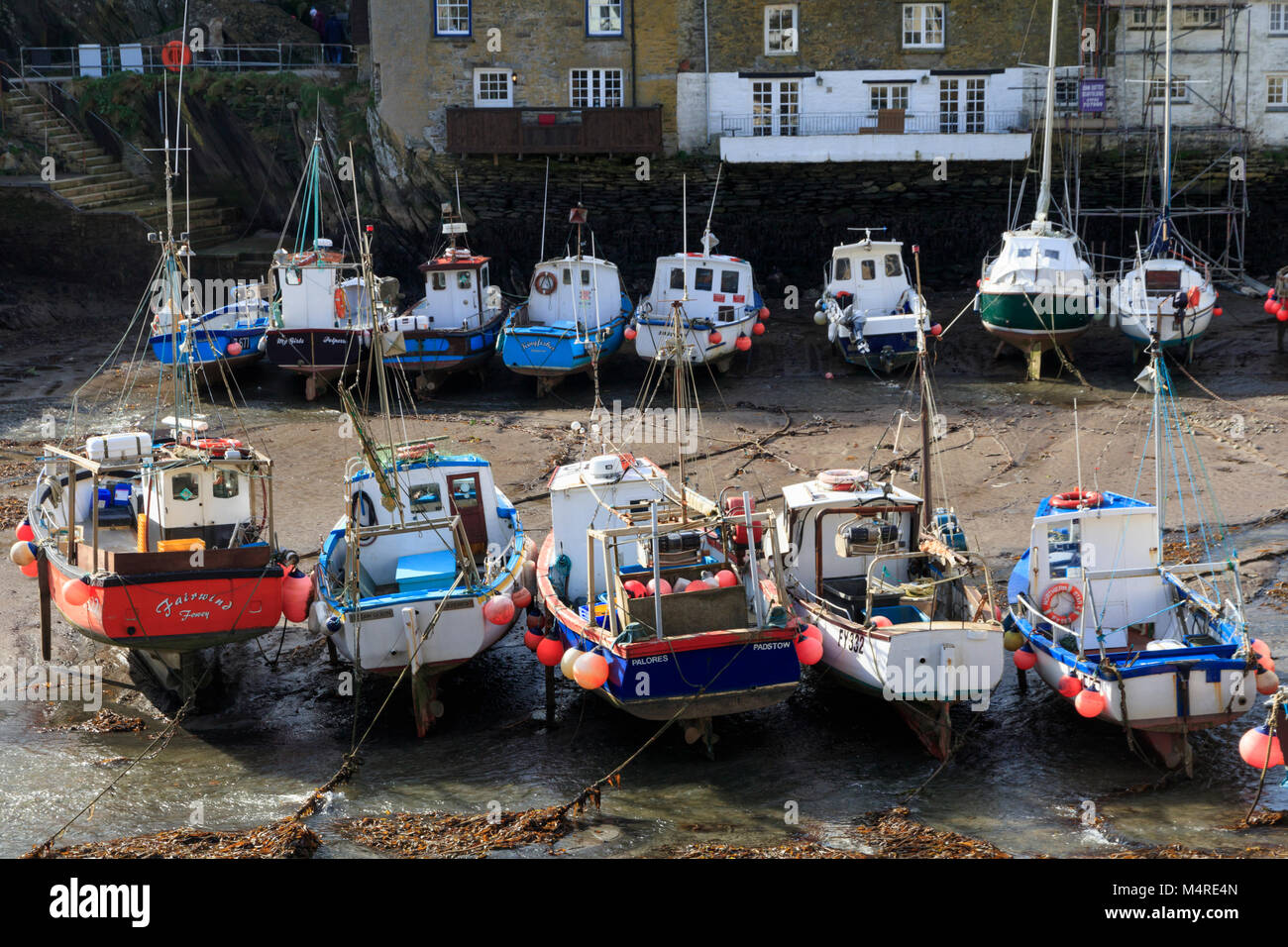 Colourful inshore fishing boats beached at low tide in Polperro harbour, Cornwall, UK - Stock Image