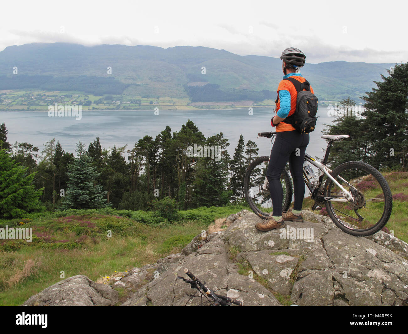 Mountain biker above Carlingford Lough, Rostrevor Forest Park, County Down, Northern Ireland. - Stock Image