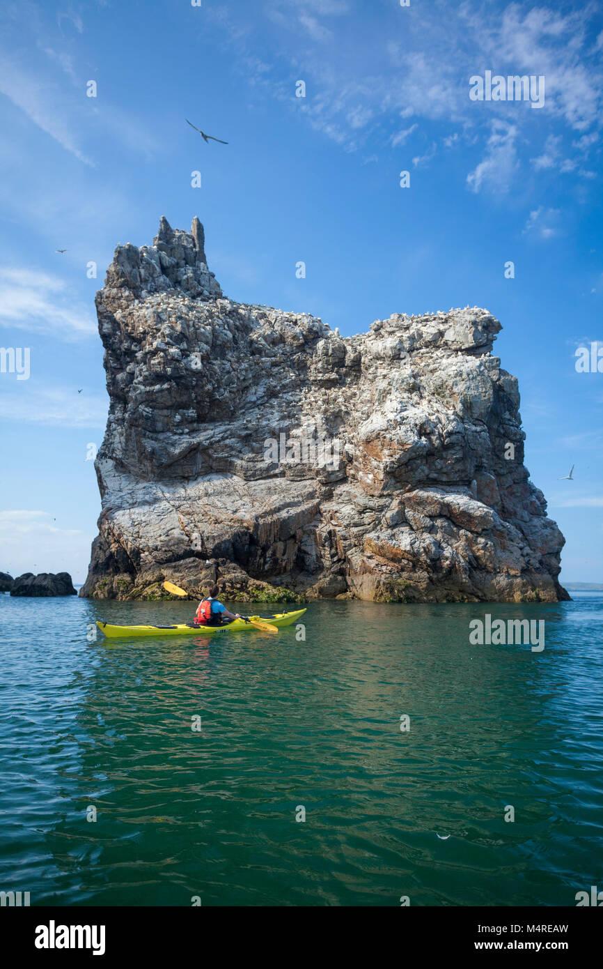 Sea kayaker beneath the main gannet colony on Ireland's Eye, County Dublin, Ireland. - Stock Image