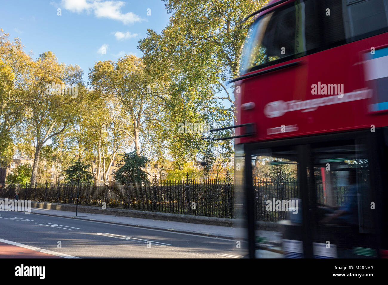 Red London bus on Theobalds Road in front of trees in Grays Inn Gardens, London, UK - Stock Image