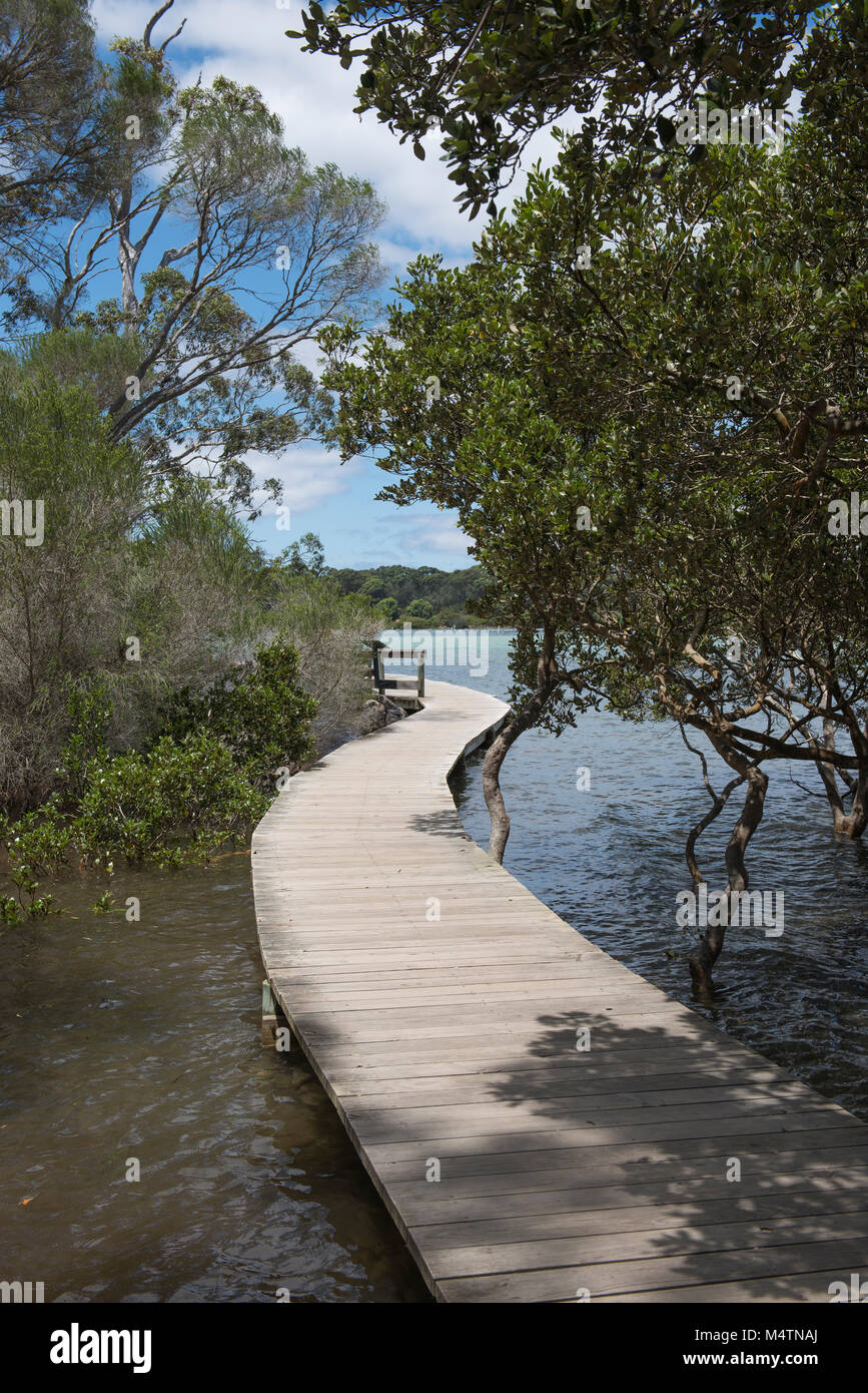 The Merimbula Boardwalk skirts the northern shores of the Top Lake section of Merimbula Lake in New South Wales - Stock Image