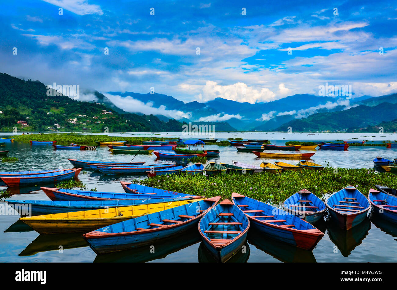 Colorful row boats docked on Lake Phewa in Pokhara, Nepal. - Stock Image