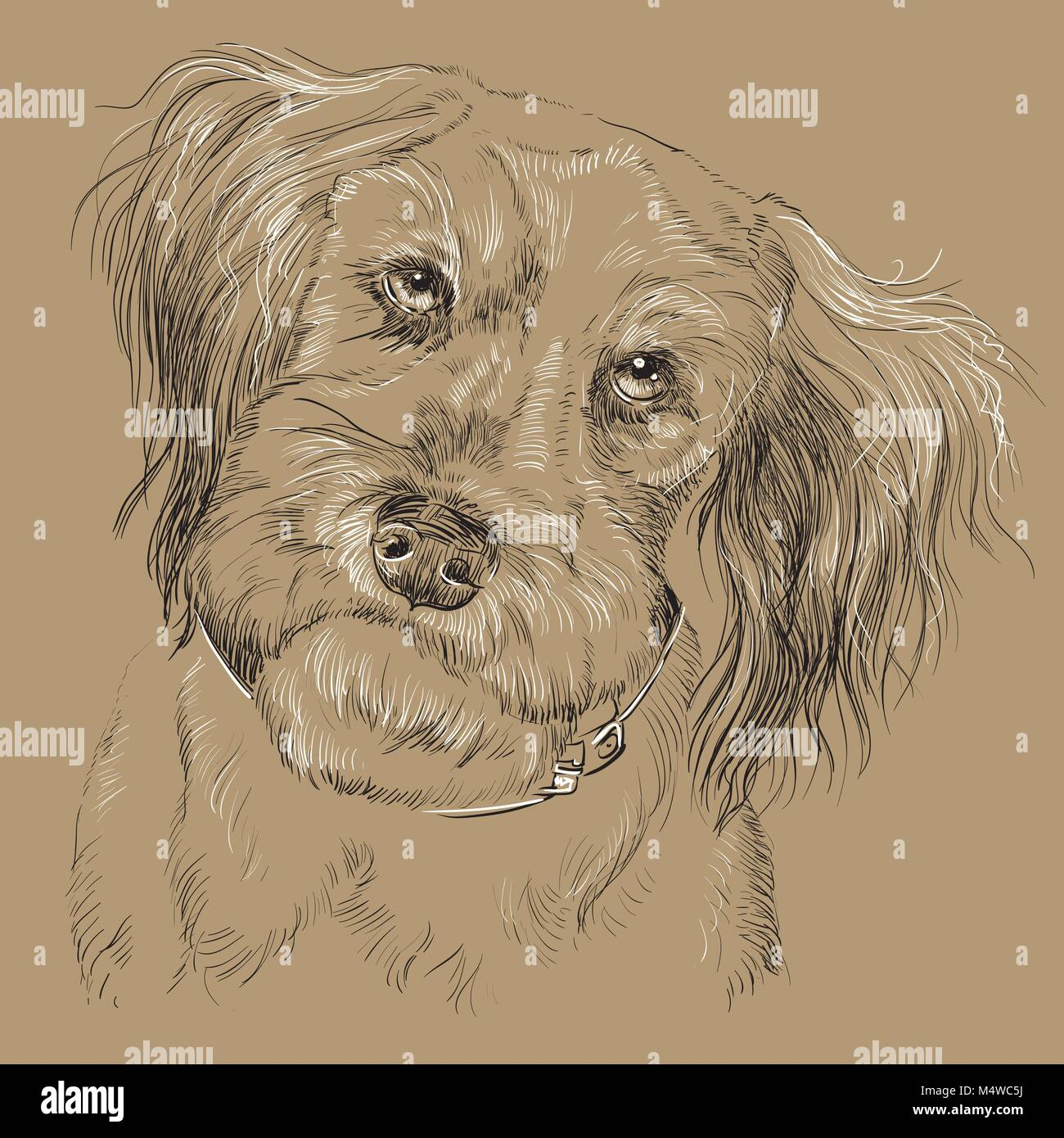 Fluffy mongrel dog vector hand drawing black and white illustration isolated on beige background - Stock Vector