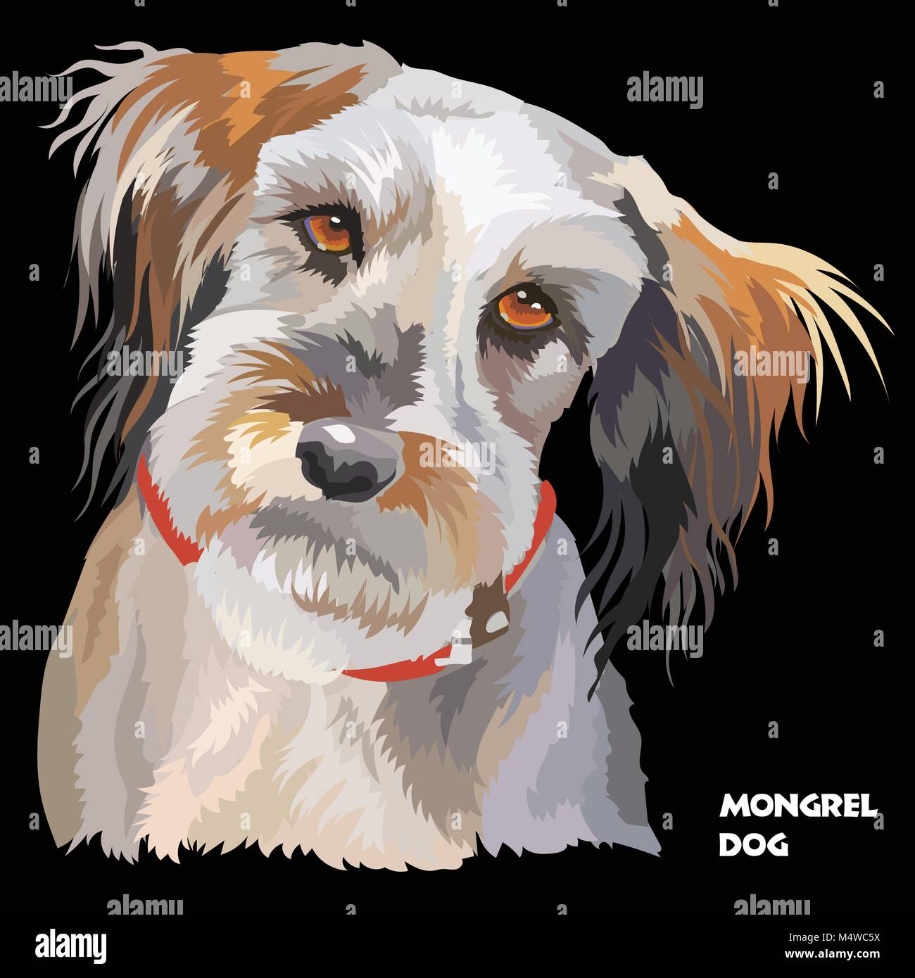 Colored portrait of Fluffy mongrel dog isolated vector illustration on black background - Stock Vector