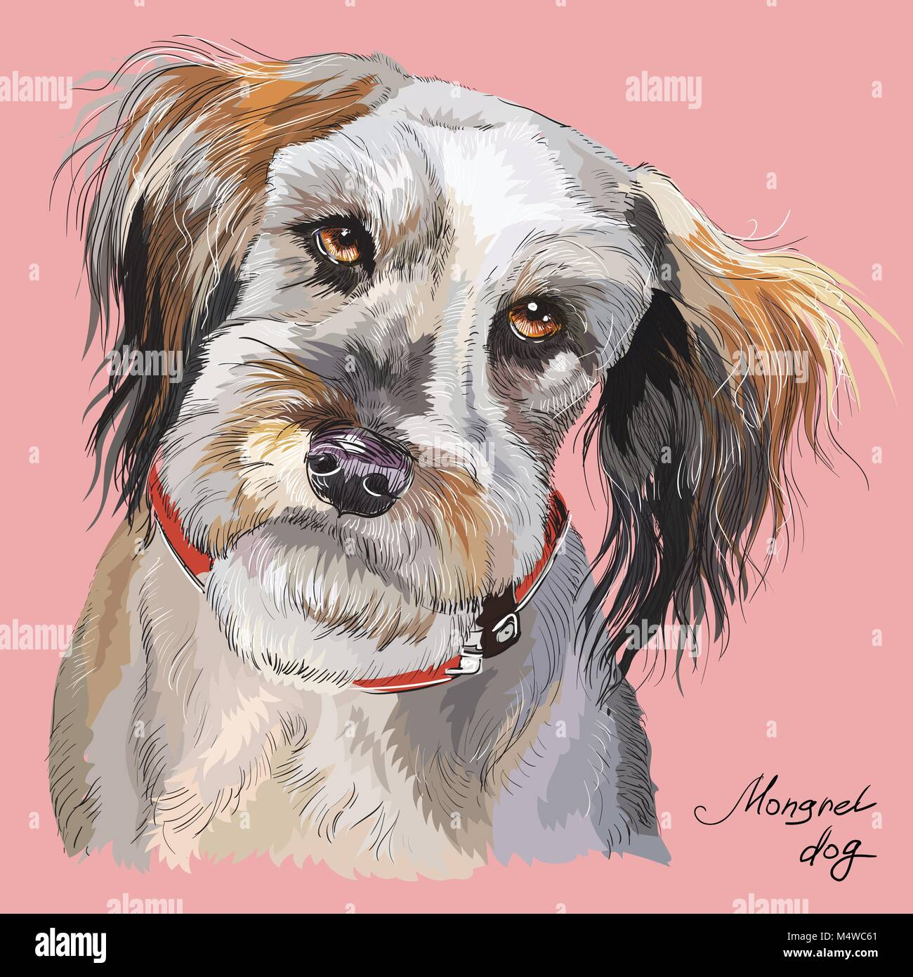 Fluffy mongrel dog vector hand drawing illustration in different color isolated on pink  background - Stock Vector