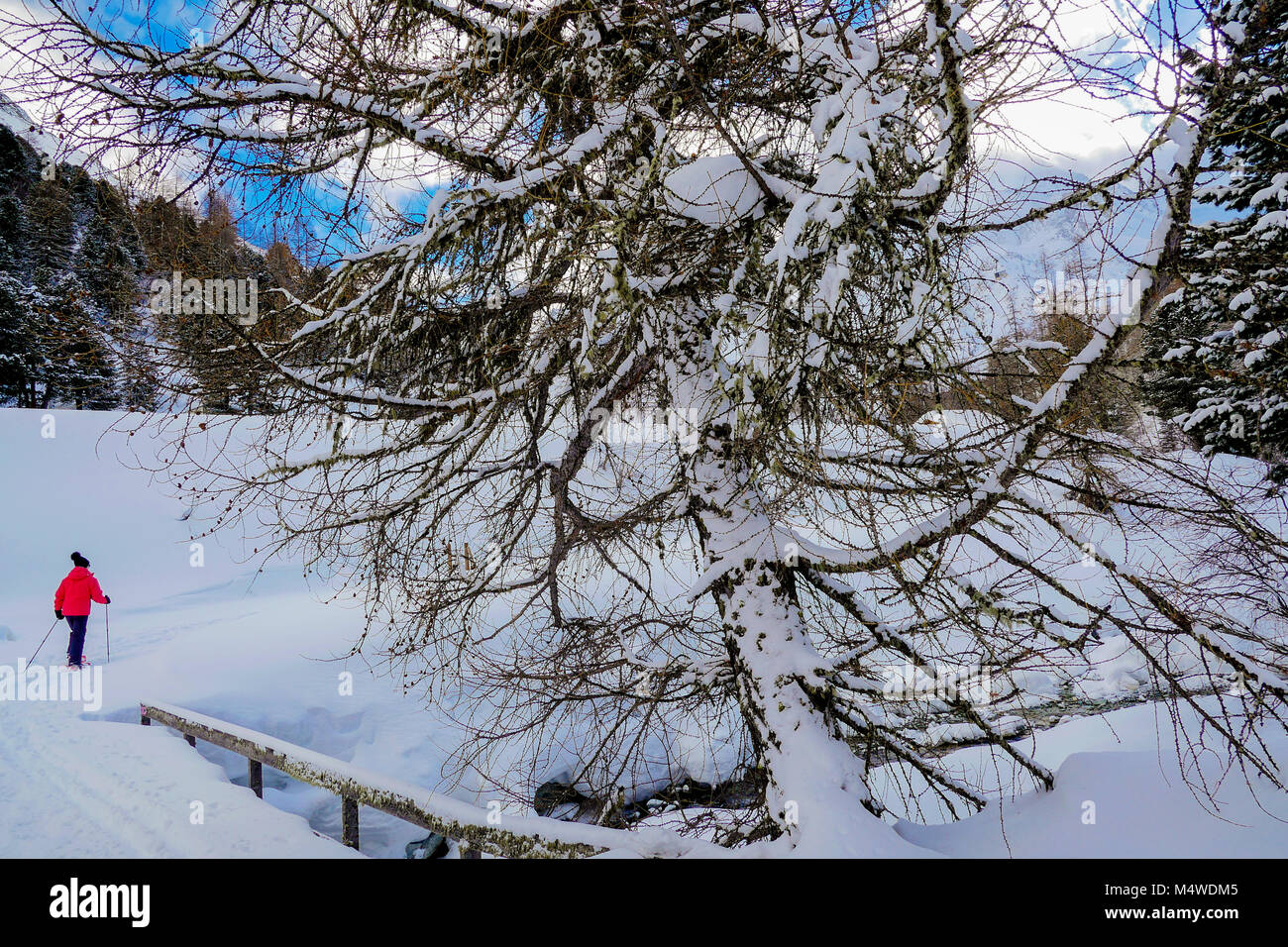 Winter sport: snowshoeing in Herens Valley, Valais, Swiss - Stock Image