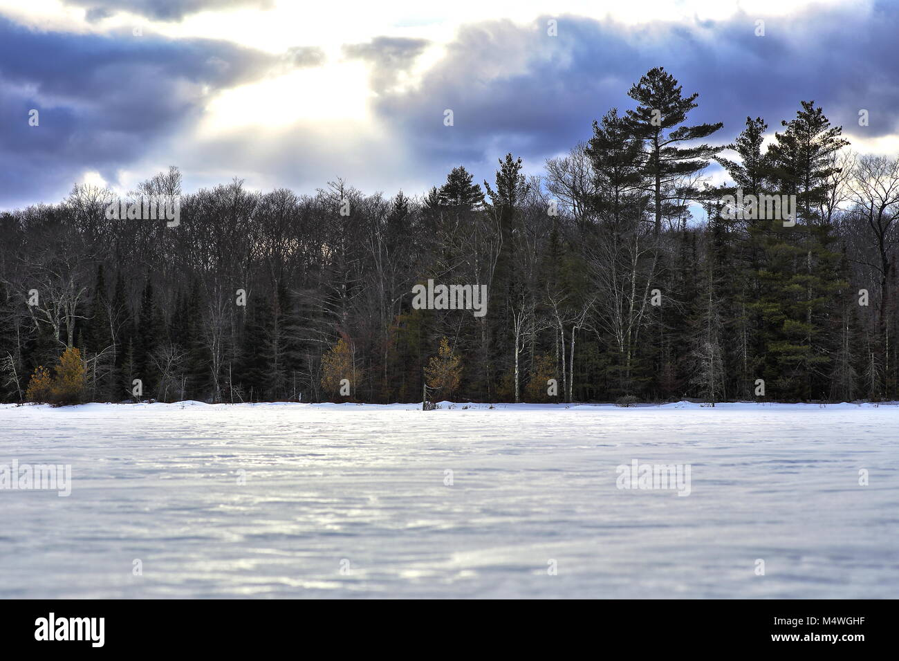 Wingra Park Madison If This Is What >> Wisconsin Winter Trees Landscape Stock Photos & Wisconsin Winter Trees Landscape Stock Images ...