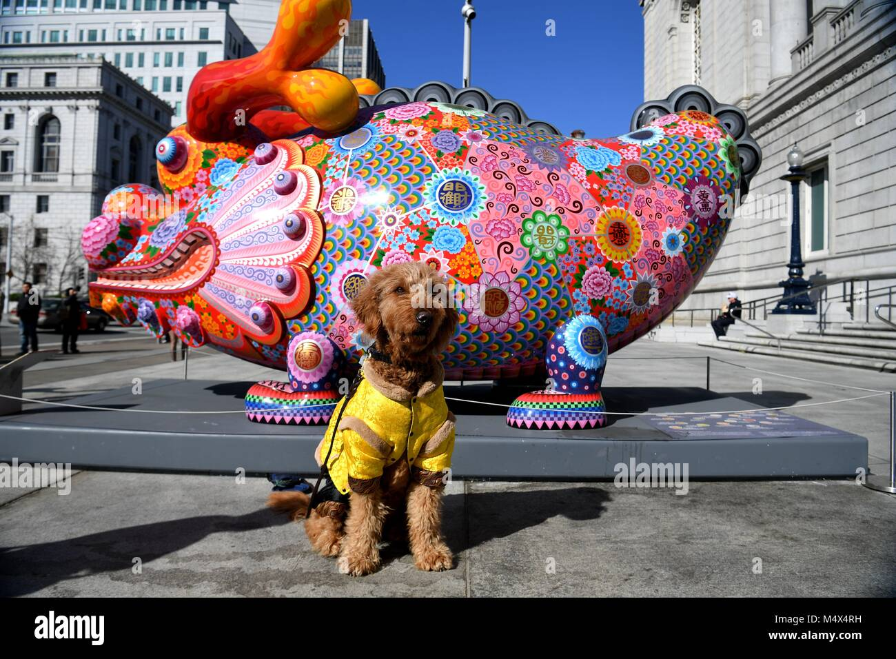 San Francisco, USA. 18th Feb, 2018. A dog sits in front of the Asian Art Museum in San Francisco, the United States, - Stock Image