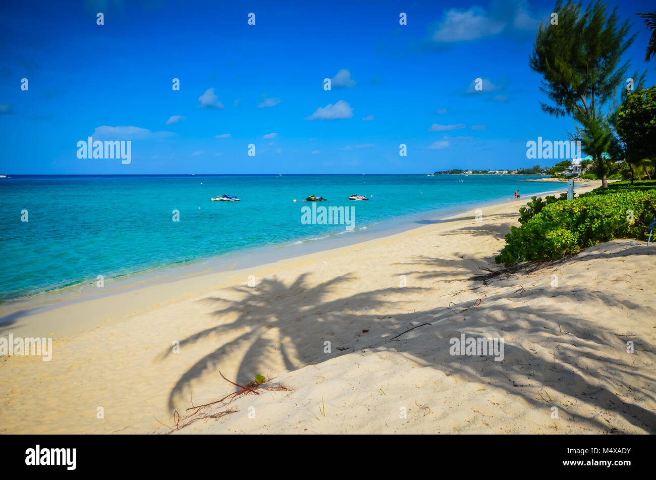 Palm tree shadow on white sand beach, deserted in early morning. - Stock Image
