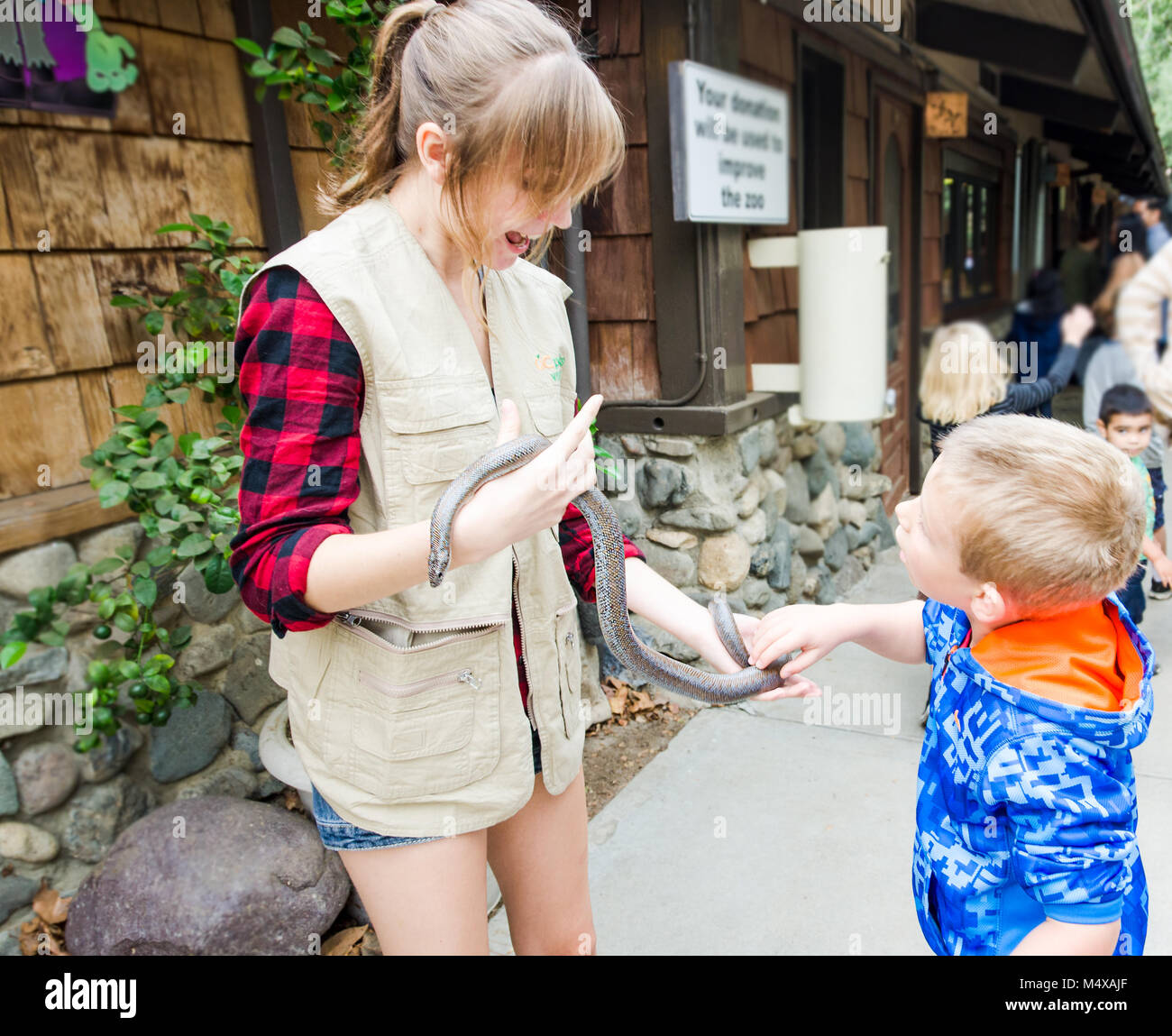 Smiling zoo educator shows a snake to a boy. - Stock Image