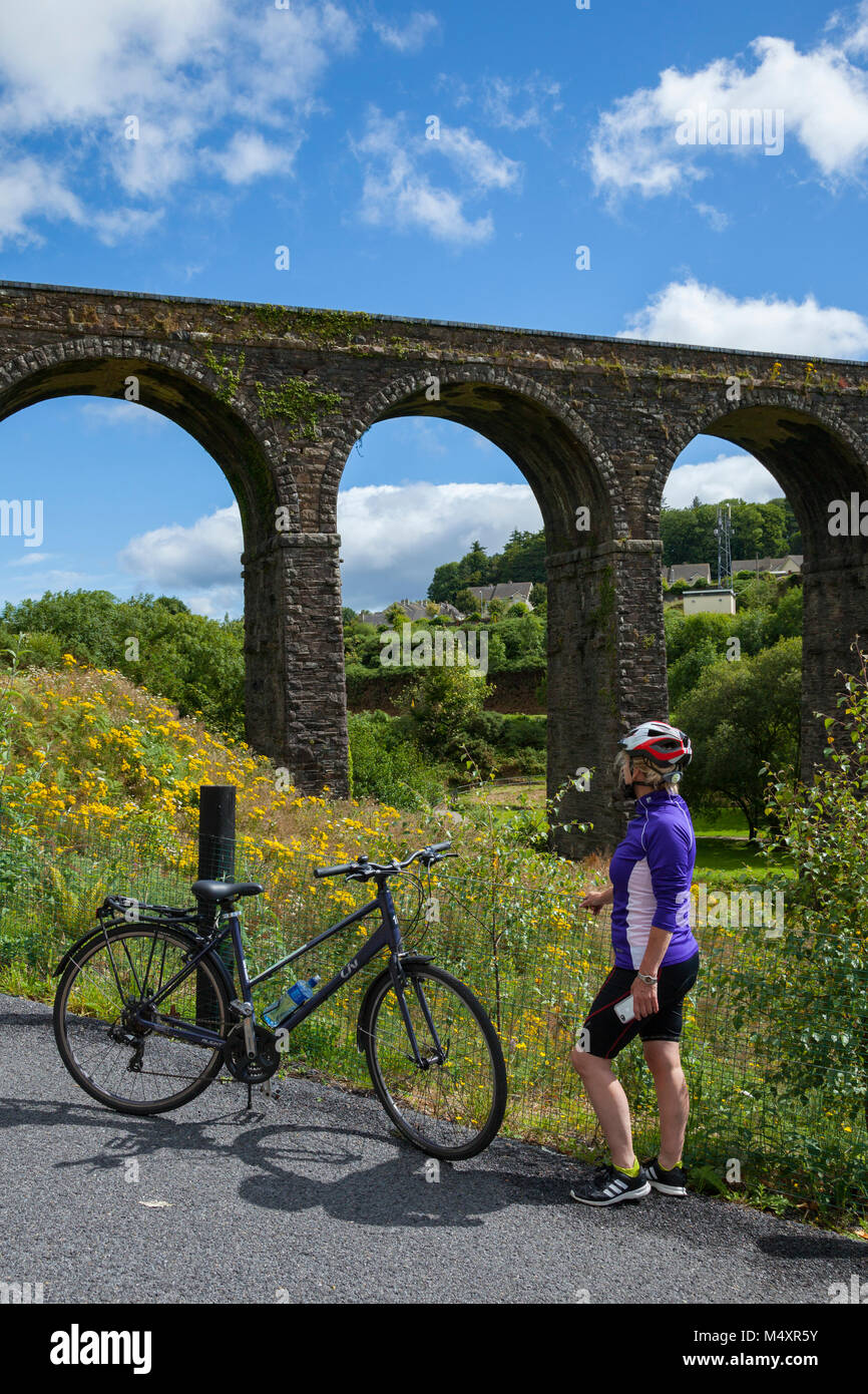 Cyclist beneath Kilmacthomas Viaduct, Waterford Greenway, County Waterford, Ireland. - Stock Image