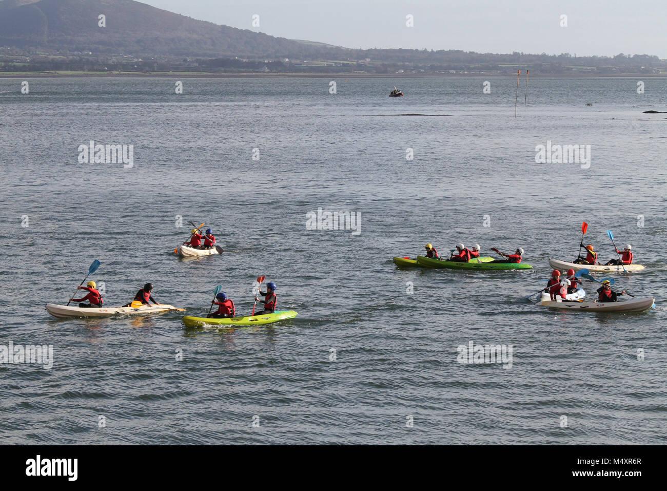 Young people kayaking on Carlingford Lough. at Carlingford, County Louth. - Stock Image
