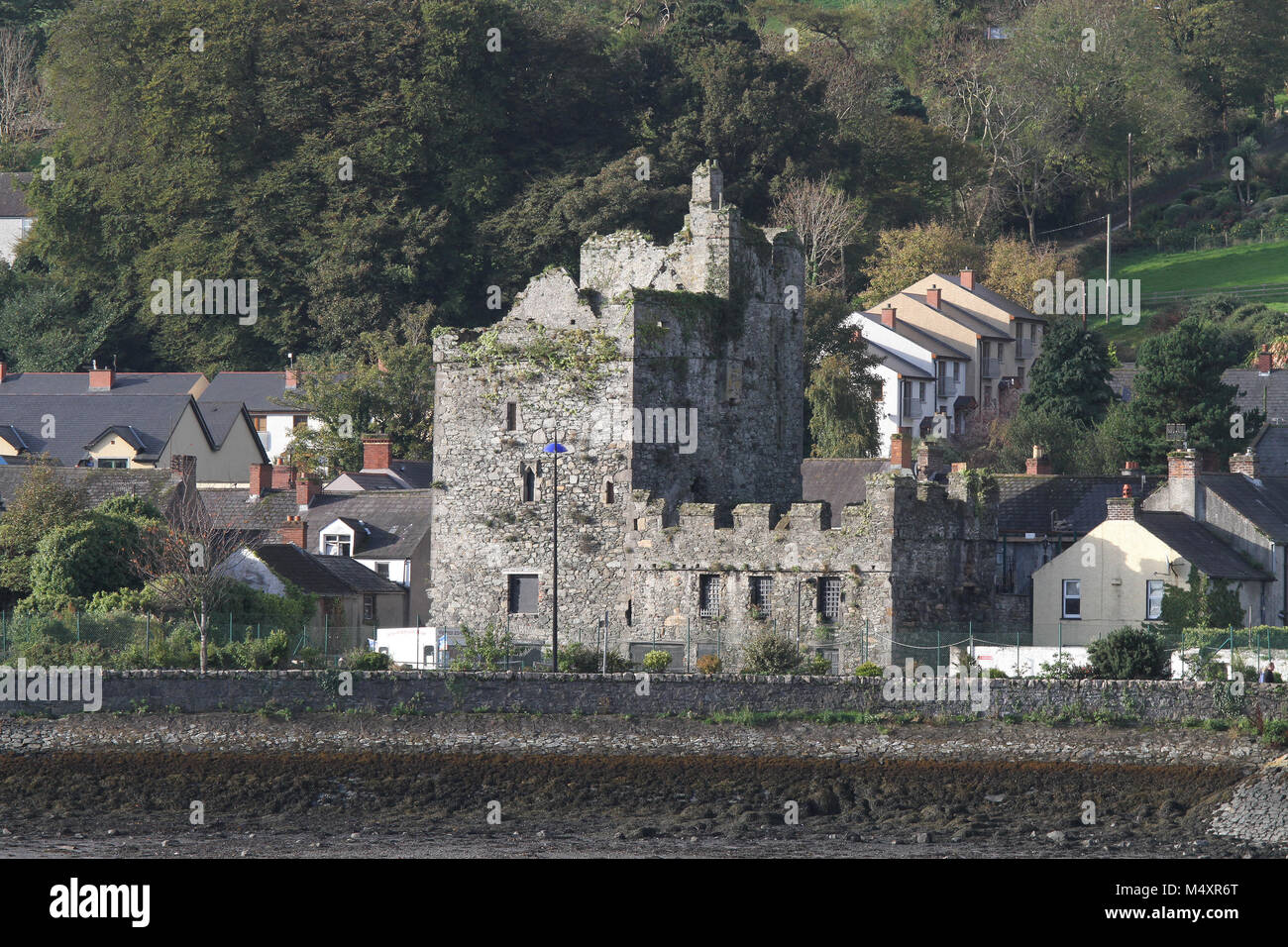 Taaffes Castle a fortified tower-house or merchants house in Carlingford, County Louth, Ireland. - Stock Image