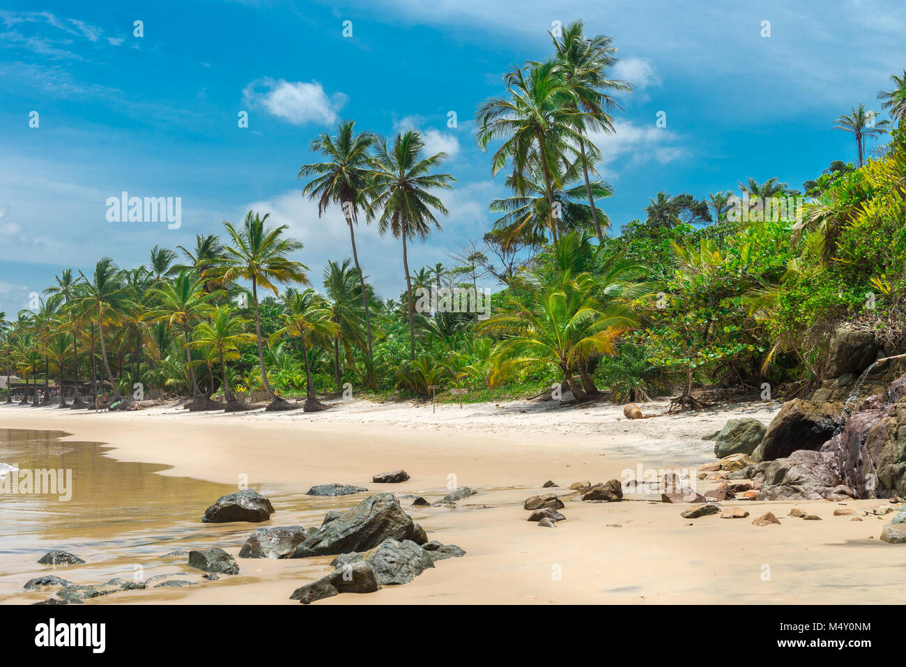 Beautiful beach nature near Itacare in Bahia - Stock Image