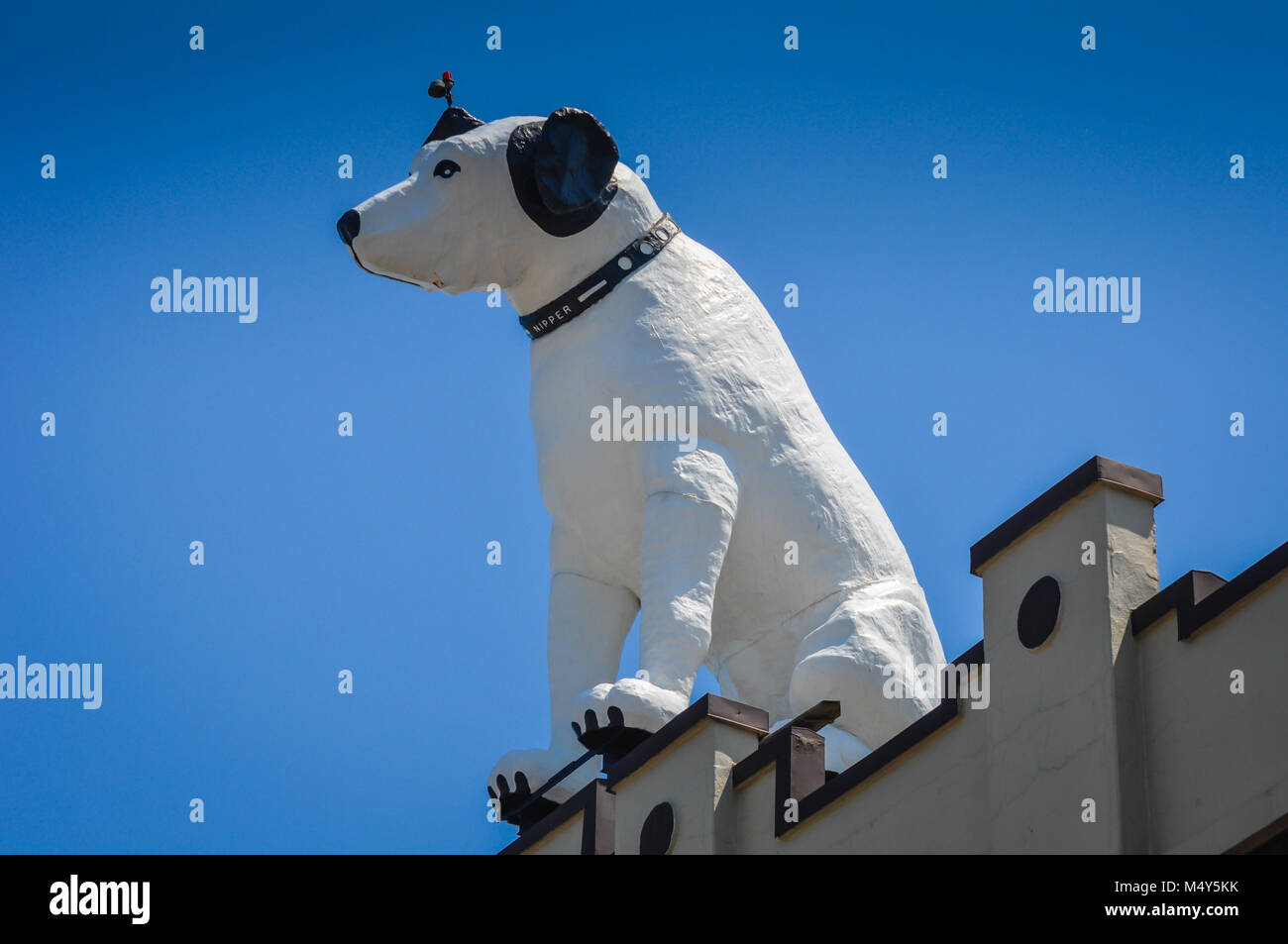 White dog statue, likeness of RCA mascot Nipper, perched on top of a building with a bright blue sky background, - Stock Image