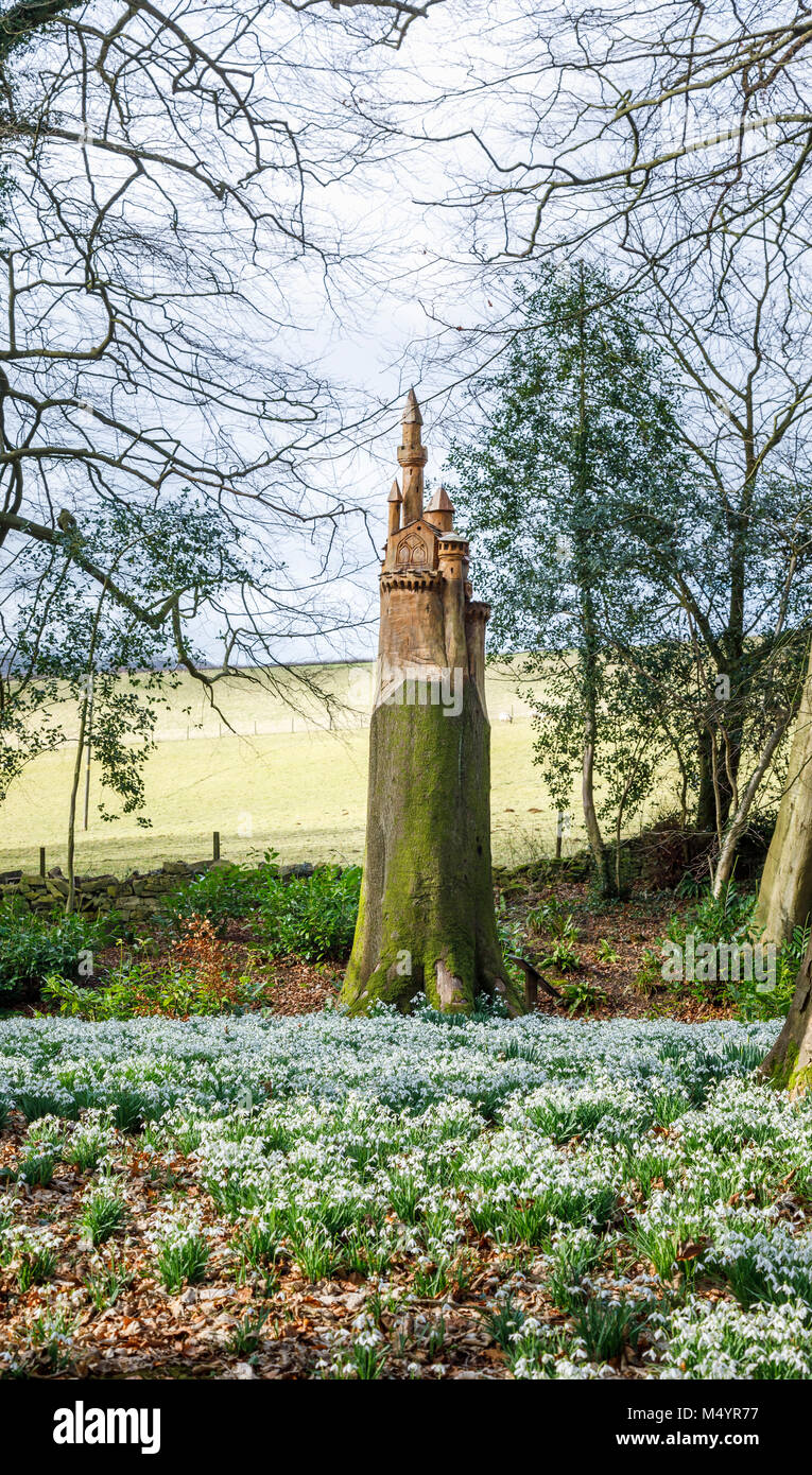 Carpet of snowdrops and carving of a castle on the stump of a dead tree trunk in woodland, Painswick Rococo Garden, - Stock Image
