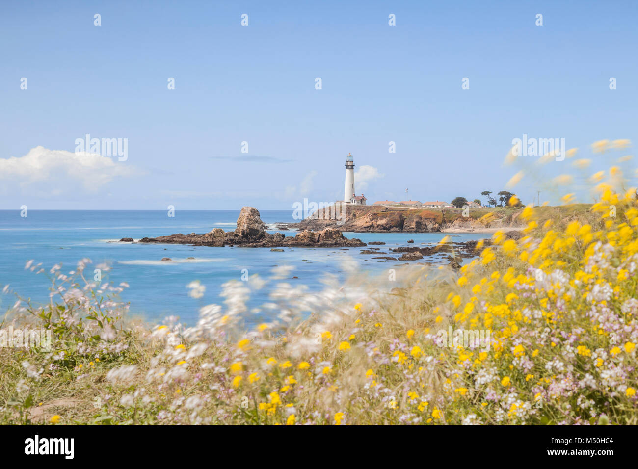 Pigeon Point Lighthouse on a windy spring day, focus on lighthouse, foreground flowers are blowing in the wind. - Stock Image