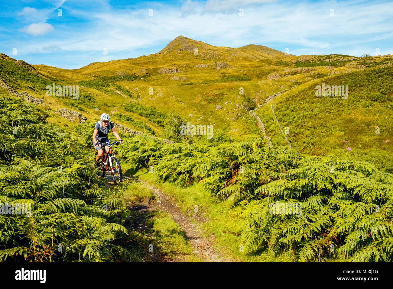 Female mountain biker on trail above the River Lickle in the English Lake District - Stock Image