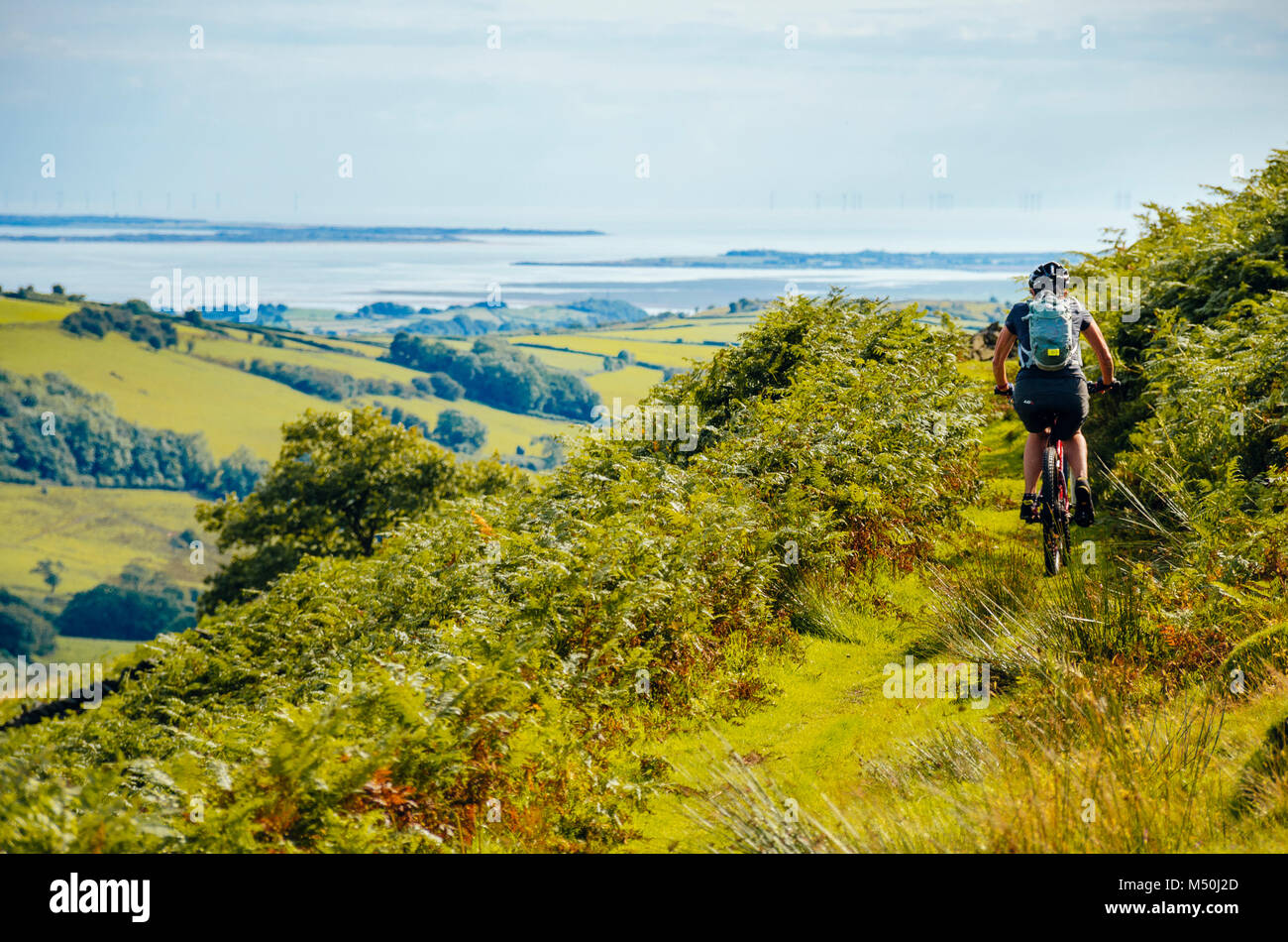Female mountain biker on trail above the River Lickle in the English Lake District with Morecambe Bay in the distance - Stock Image