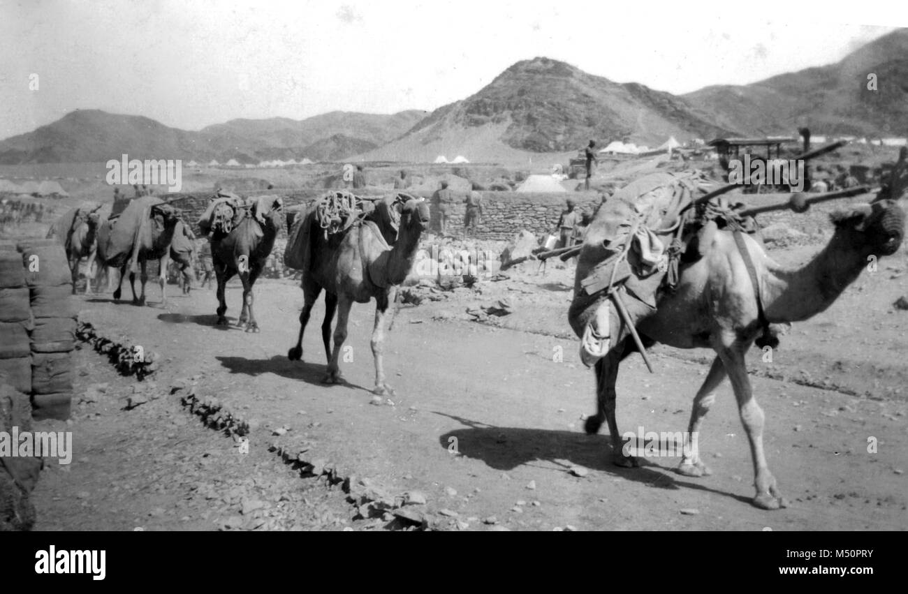 British Army Camp in Pakistan with Camel train delivering supplies, circa 1919 during the third Afghan War Stock Photo