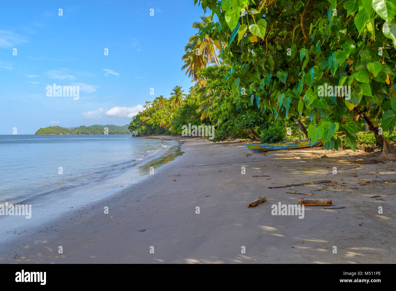 Palms and an old boat, sandy beach, Dominican Republic, caribbean sea - Stock Image