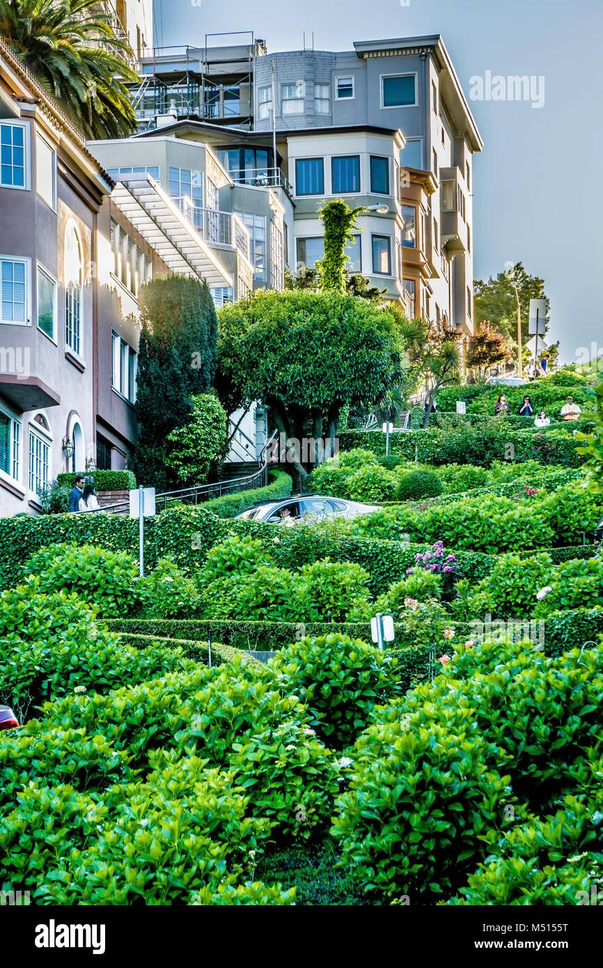top city views from lombard street in san francisco california - Stock Image