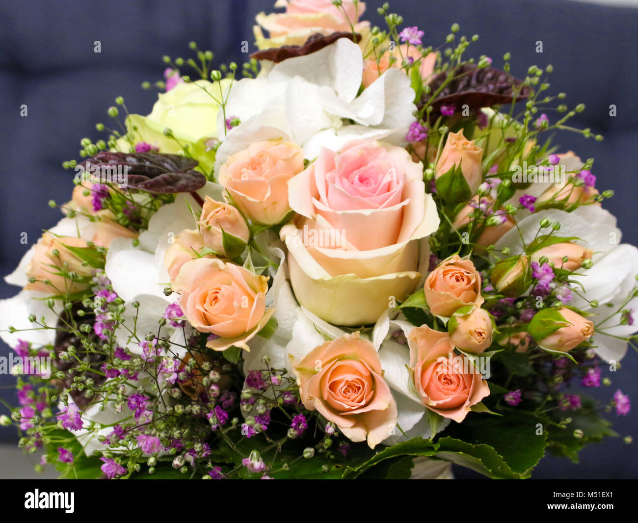 Violets And Roses Stock Photos & Violets And Roses Stock Images - Alamy