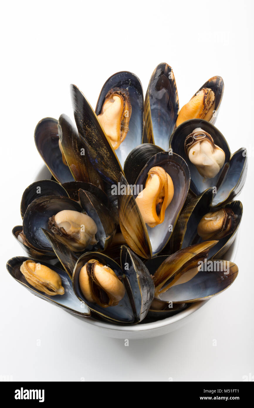 fd0dfe65503042 Cooked, rope-grown mussels, Mytilus edulis, from a supermarket. England UK