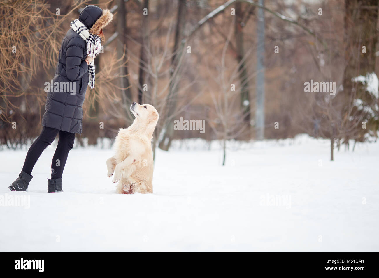 Picture of young woman in black jacket training dog in snowy park - Stock Image