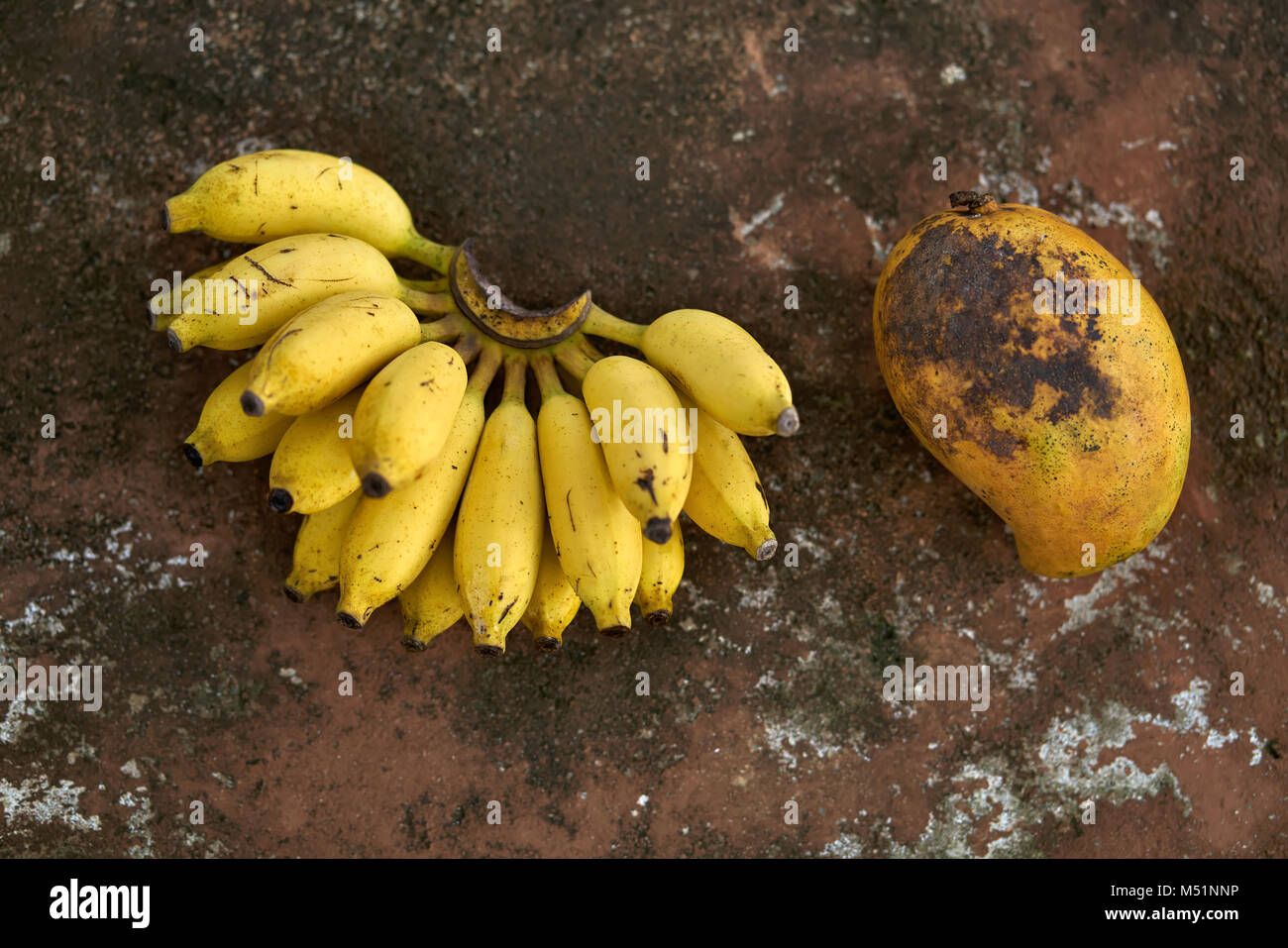 Colorful bananas and papaya - Stock Image