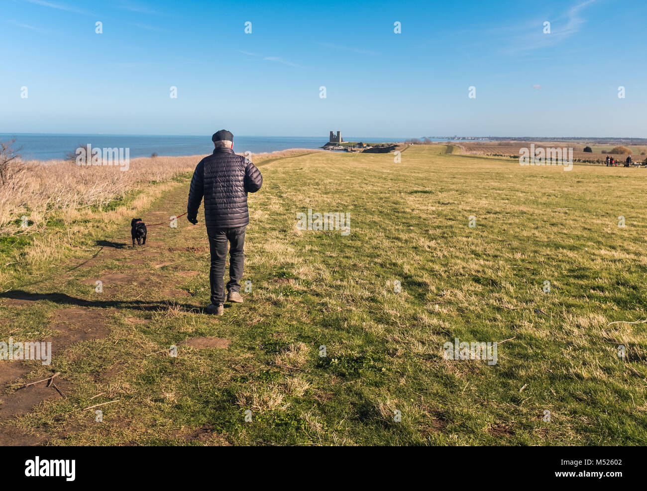 A man walks his dog heading to Reculver Towers,  Reculver, Kent, UK along the cliff top walk on the coastal path - Stock Image