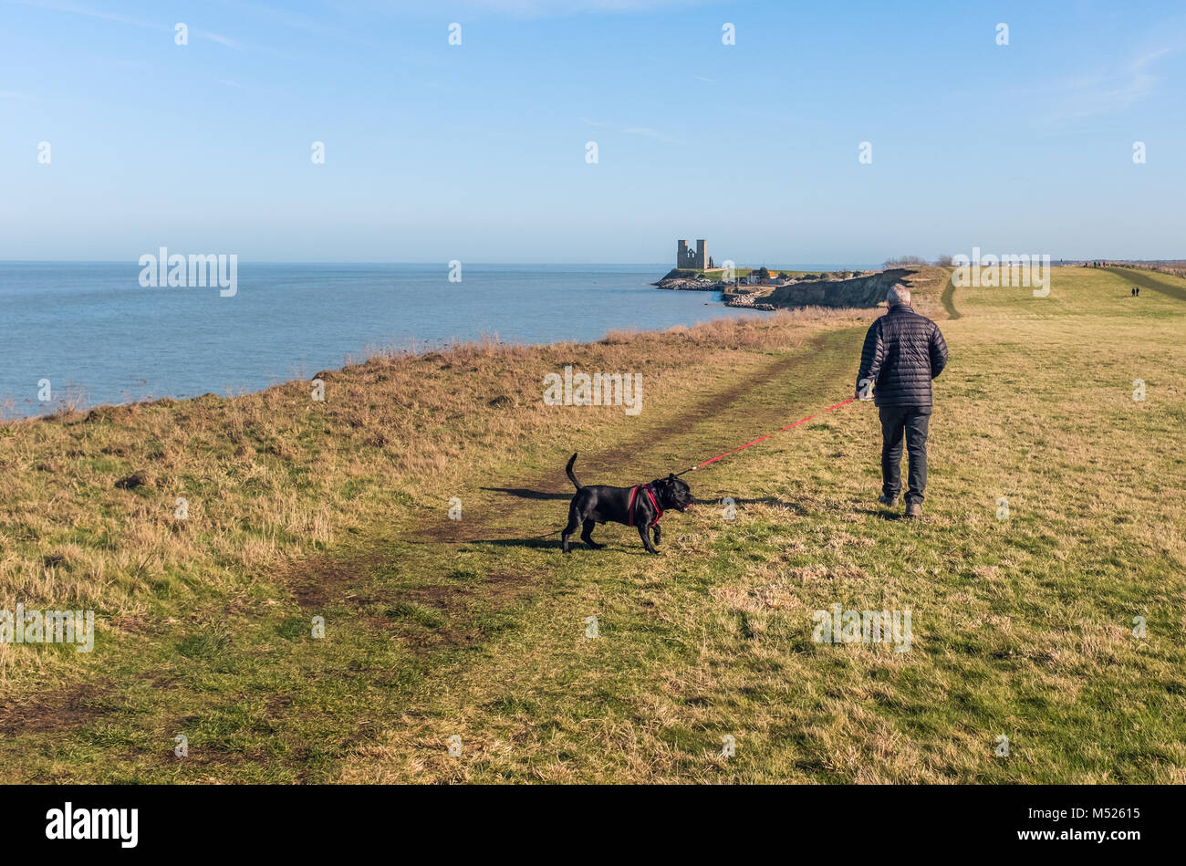 A man walks his dog heading to Reculver Towers,  Reculver, Kent, UK along the cliff top walk on the coast near to - Stock Image