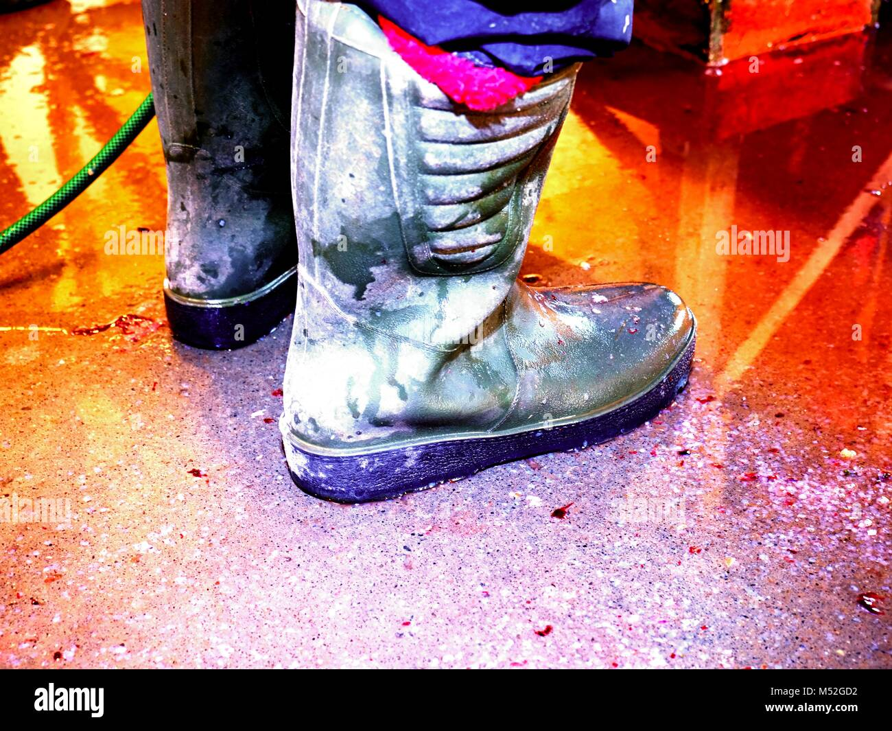 Dirty rubber boots on bloddy water floor. Fish slaughterhouse or butchery . Marble floor and ground pressure washing Stock Photo