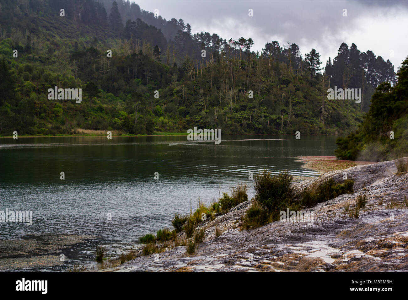 Magnificent landscape of Waikato river in New Zealand - Stock Image