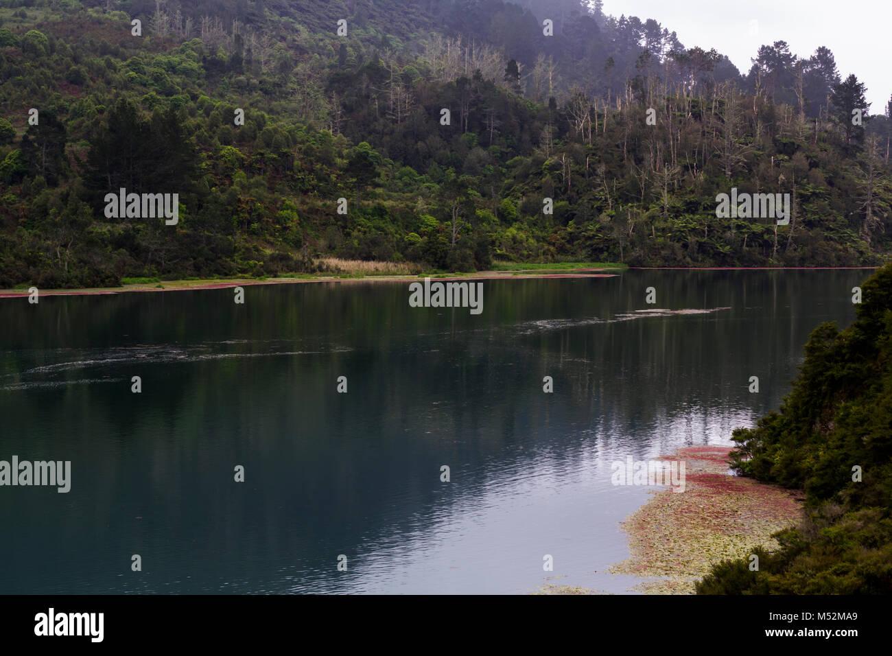 New Zealand Waikato river landscape - Stock Image