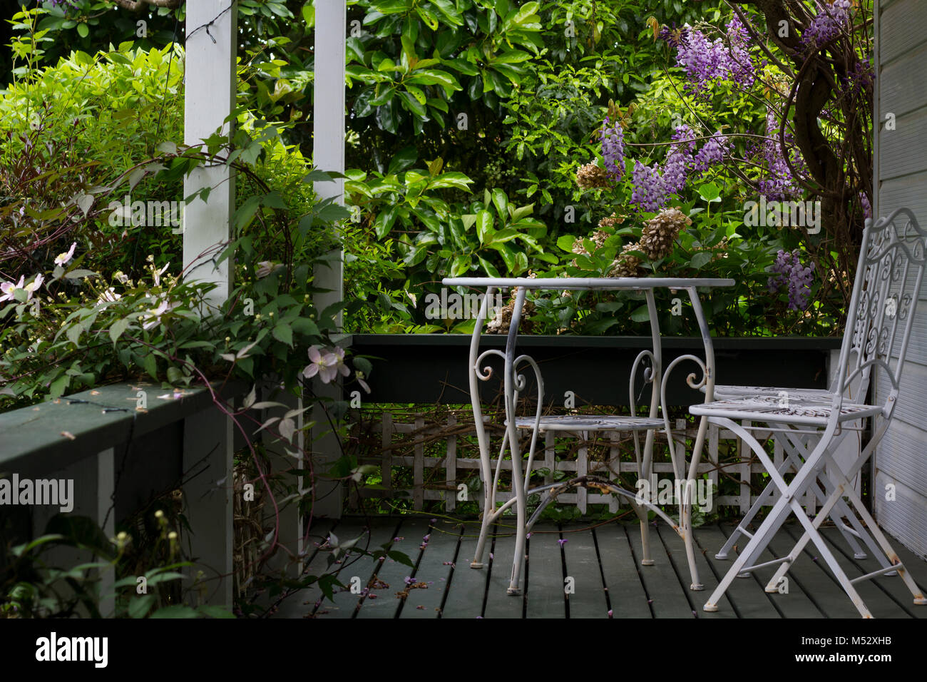 White table and chair on porch and tree with purple flowers stock white table and chair on porch and tree with purple flowers mightylinksfo
