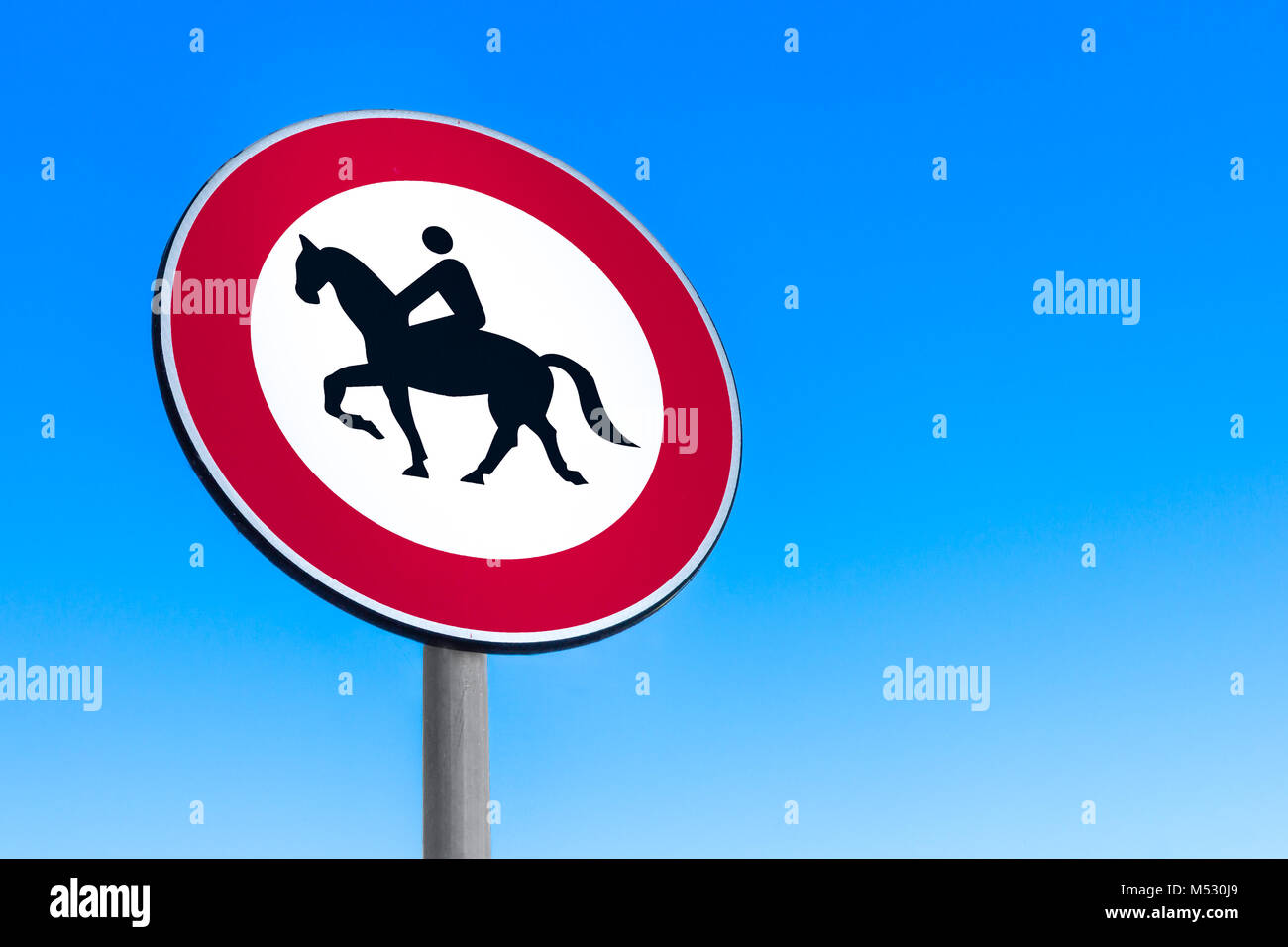 Road sign to prohibit passage with horse. - Stock Image