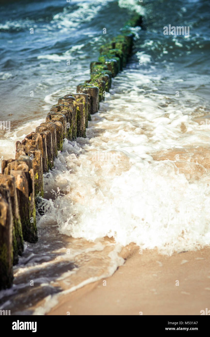 Old wooden breakwaters - Stock Image