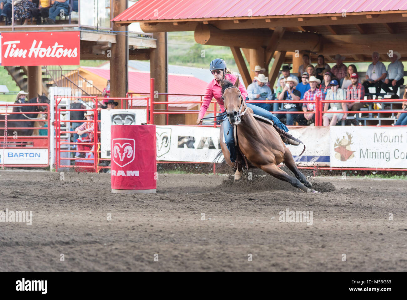 Barrel racing horse and rider gallop around barrel at the 90th Williams Lake Stampede, one of the largest stampedes - Stock Image