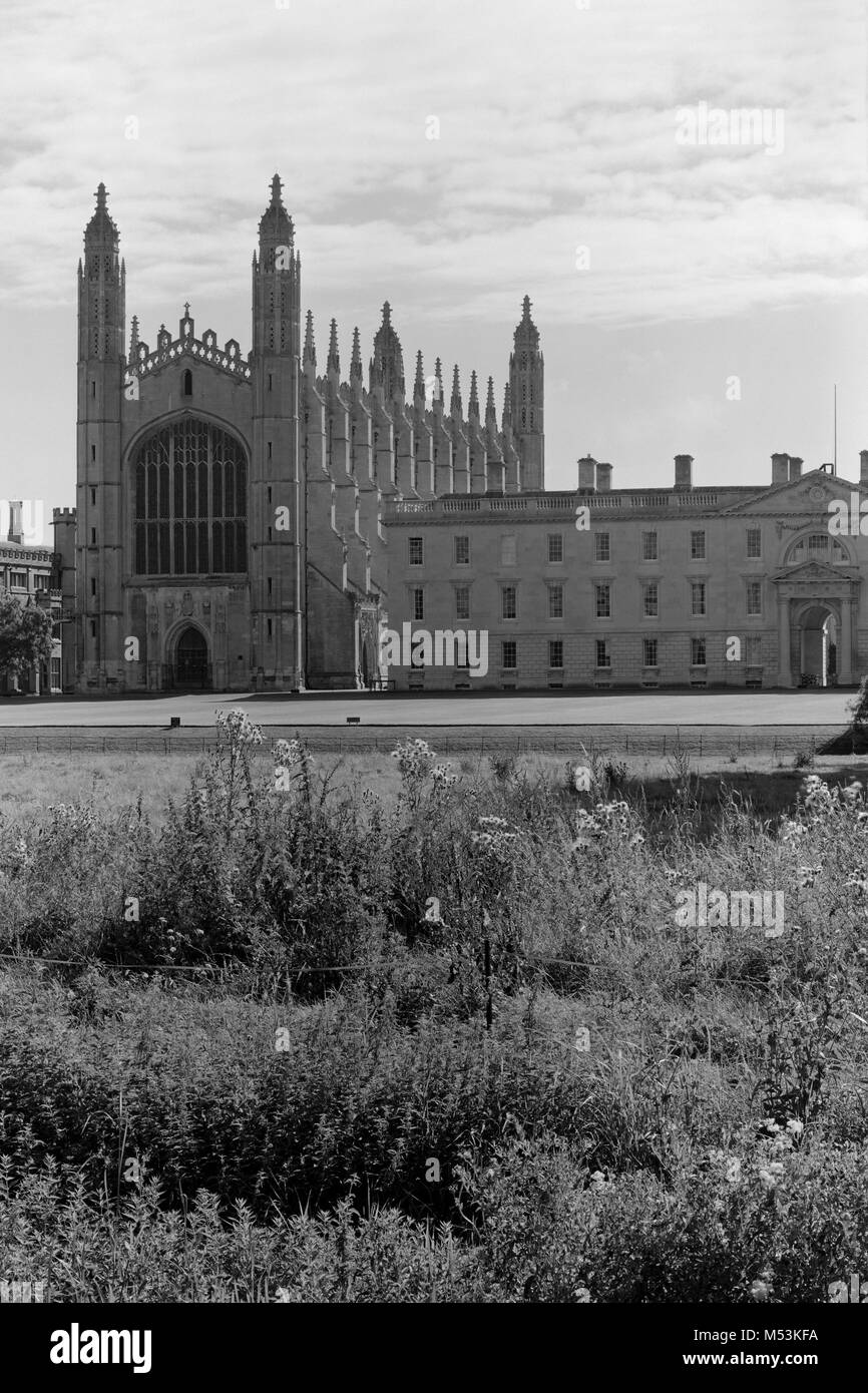 King's College Cambridge from the Backs - Stock Image