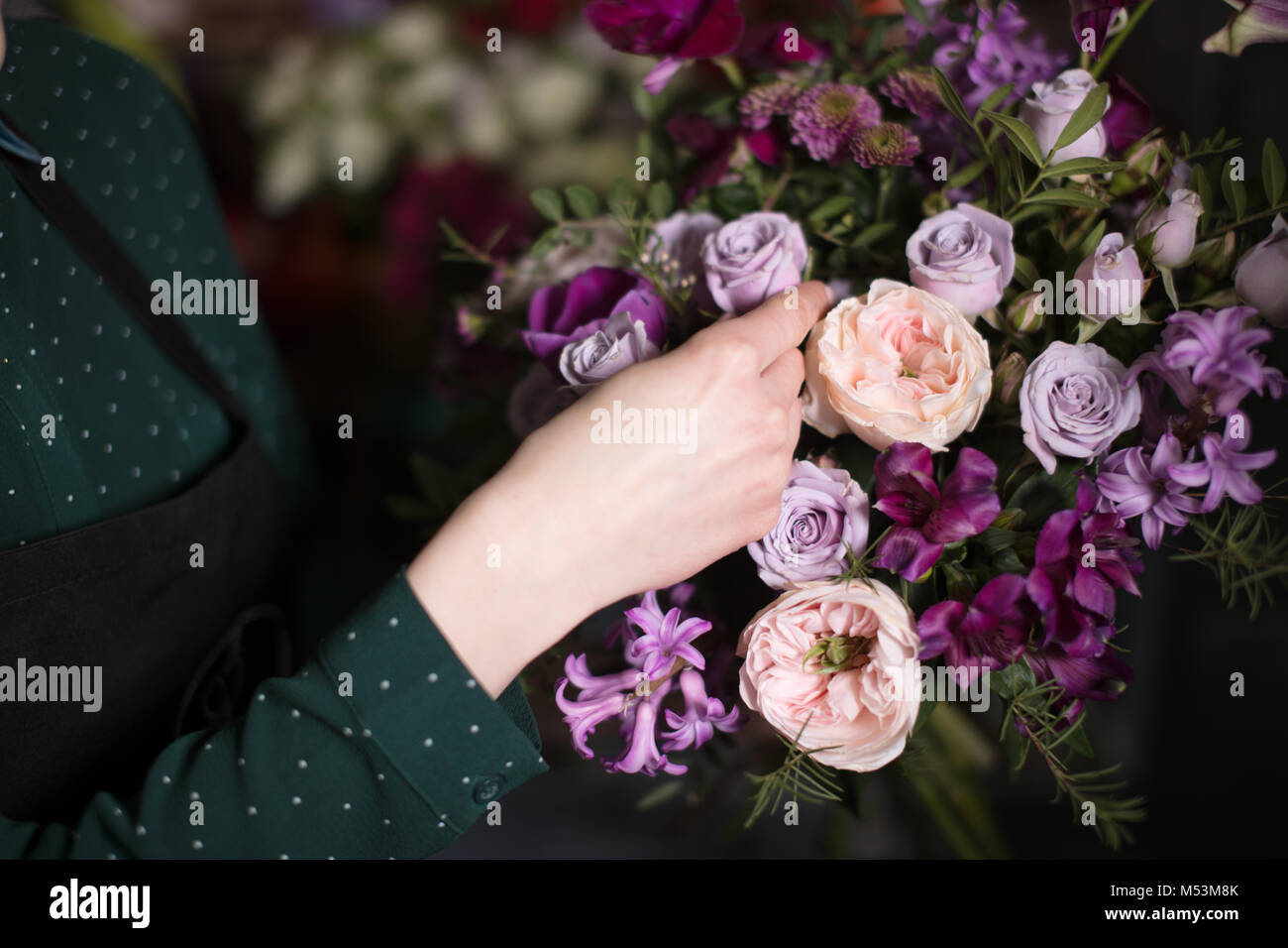 young vendor touching beautiful roses at shop - Stock Image