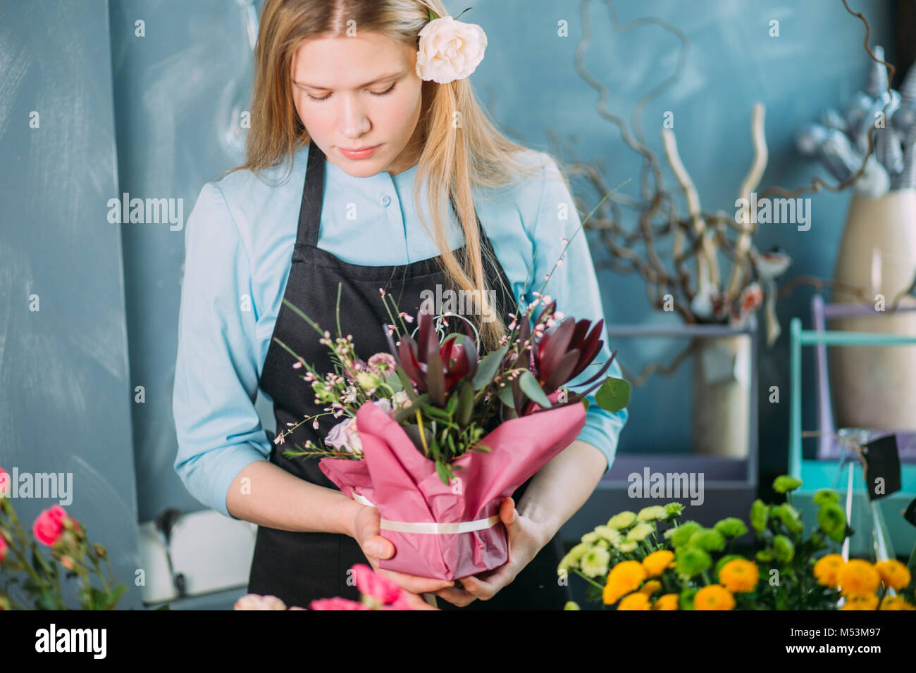 young florist displasing flowers on blue background - Stock Image