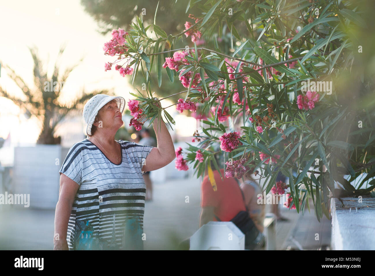Elegant mature woman holding blooming branch. Blossom spring concept, aroma therapy. - Stock Image