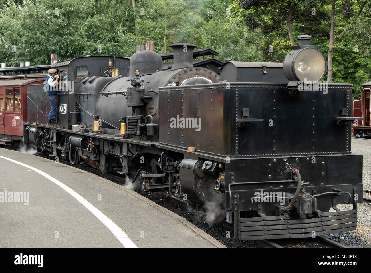 Puffing Billy G42 Garratt Locomotive at Belgrave, Victoria, Australia - Stock Image