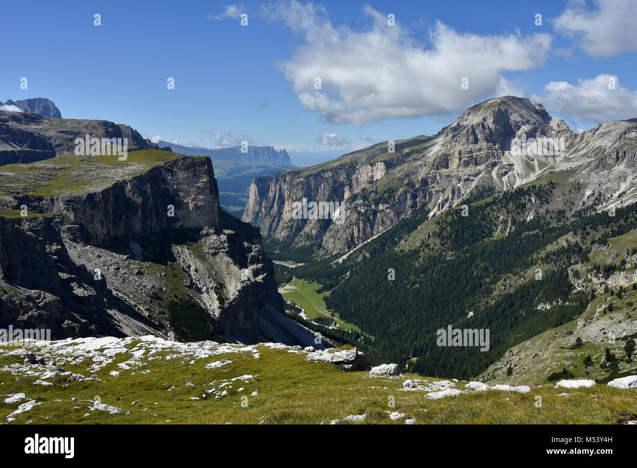 Dolomite Alps; South Tyrol; Italy; Vallunga; Langental; - Stock Image