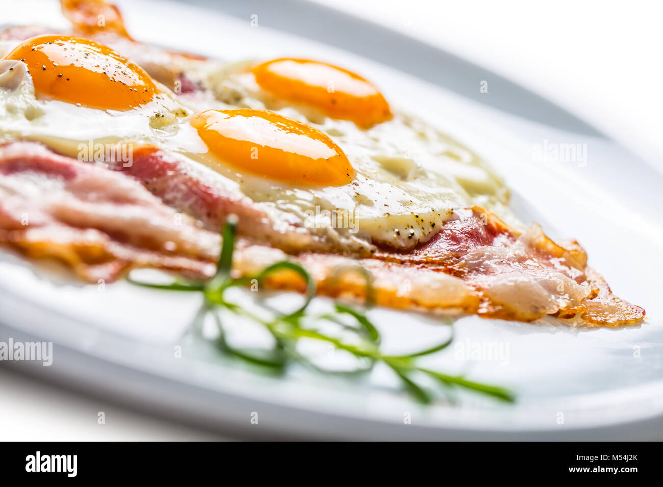 Ham and Eggs. Bacon and Eggs. Salted egg with pepper on white plate. English breakfast. - Stock Image