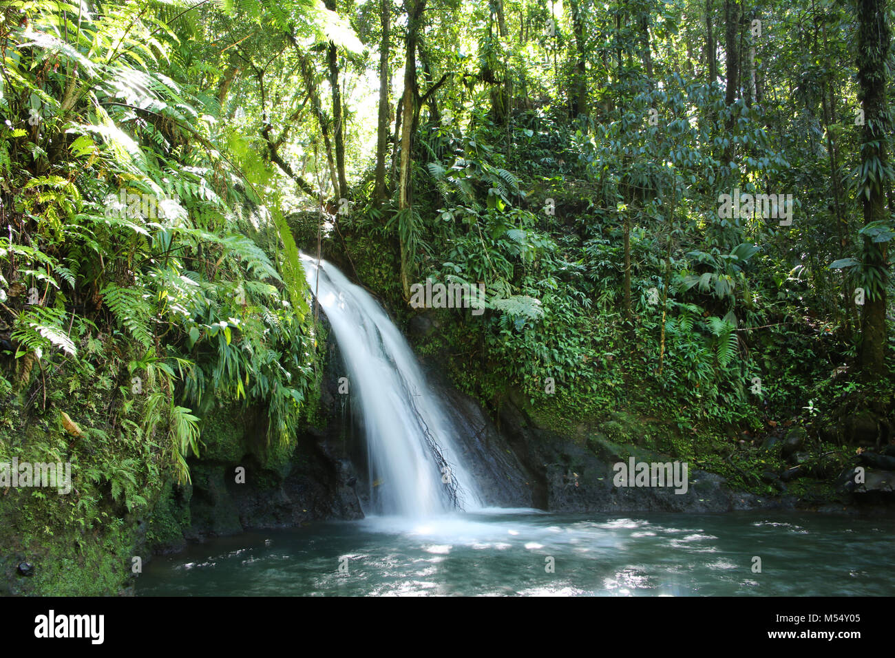 Crayfish Waterfall or La Cascade aux Ecrevisses, Guadeloupe National Park, Guadeloupe, French West Indies. - Stock Image