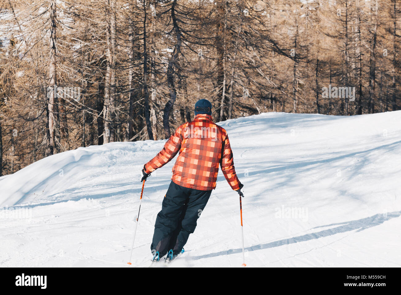 Skier skiing with checked jacket down the slope in the forest - Downhill in high mountains. - Stock Image