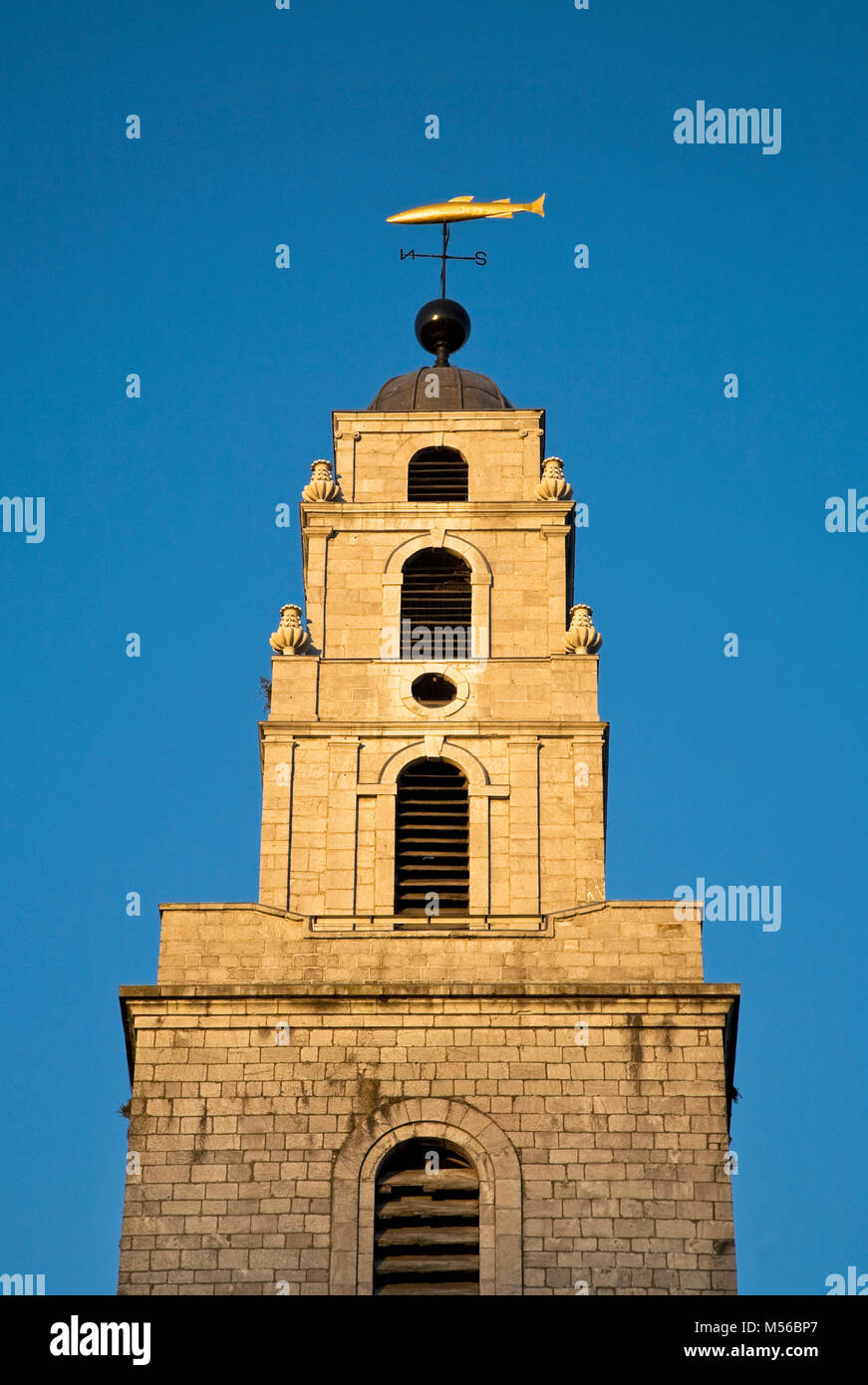 The salmon shaped weather vane, known locally as 'de goldie fish'  St Anne's Church Tower, built in 1722, Shandon, - Stock Image